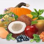 Feed Bin BioStar Healthy Critters